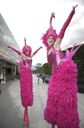 ALICE IN WONDERLAND THEMED ACTS- FLAMINGO STILTS TO HIRE UK