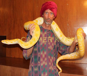 ARABIAN NIGHTS THEMED SNAKE WALKABOUT ACT TO HIRE LONDON, MANCHESTER, BIRMINGHAM