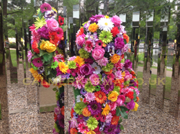 flower themed entertainment for weddings, garden shows or floral themed events