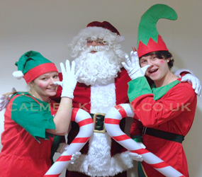 CHRISTMAS PARTY ENTERTAINMENT - SANTAS ELVES TO HIRE