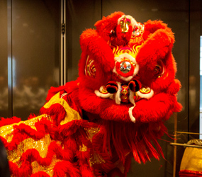 CHINESE NEW YEAR THEMED ENTERTAINMENT - LION DANCE PERFORMERS