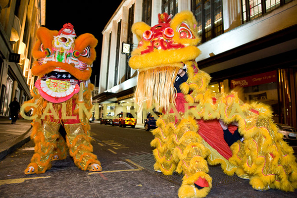 chinese lion dance acts london manchester and uk