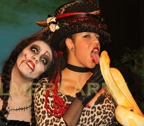 HALLOWEEN THEMED SNAKE ACTS TO HIRE
