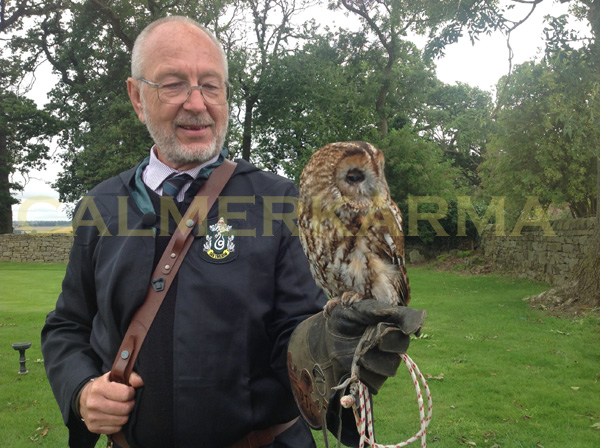 HARRY POTTER THEMED ENTERTAINMENT - THEMED OWL HANDLERS UK