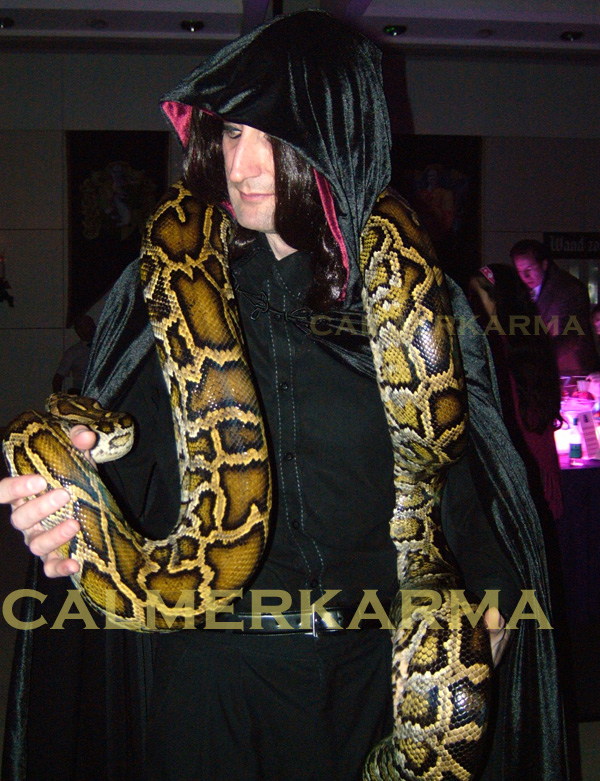 HARRY-POTTER-SNAKE-ACT-TO-HIRE-SLYTHERIN-ENTERTAINMENT