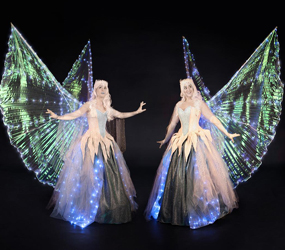 ICE FAIRIES - GLIDING ACT HIRE