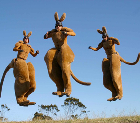 kangaroo stilts - australian themed stilts - bouncing kangaroo stilts to hire