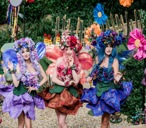 MIDSUMMER NIGHTS DREAM THEMED ENTERTAINMENT & MAGICAL FOREST ACTS HIRE