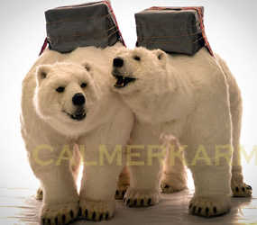 CHRISTMAS PARTY ENTERTAINMENT TO HIRE- POLAR BEAR ACT LONDON, BIRMINGHAM, BRISTOL