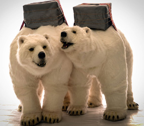 WINTER WONDERLAND THEMED ENTERTAINMENT - ANIMATRONIC POLAR BEAR ACT UK