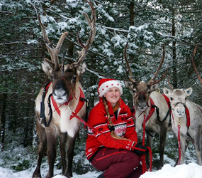 LIVE REINDEER HIRE - WINTER AND XMAS THEMED ENTERTAINMENT UK