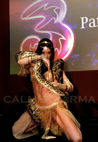 SNAKE DANCERS - STAGED ACTS AND WALKABOUT TO HIRE