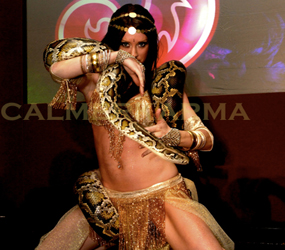 SNAKE DANCERS TO HIRE -LIVE SNAKE ACTS