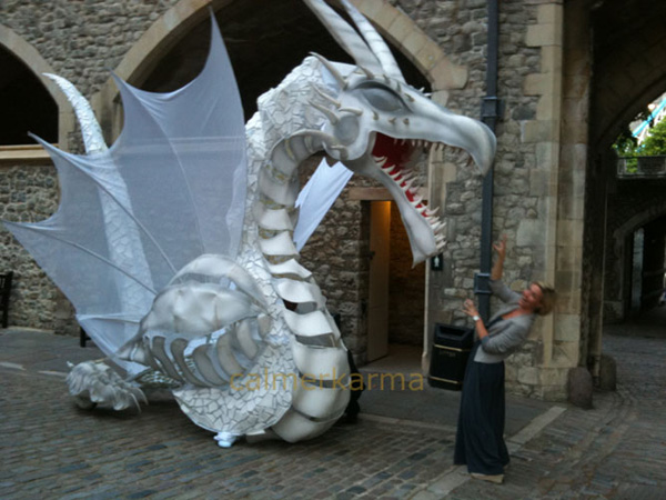HARRY POTTER THEMED ENTERTAINMENT - DRAGON UK