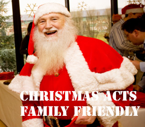 CHRISTMAS THEMED ENTERTAINMENT - FAMILY FRIENDLY ACTS - SHOPPING CENTRES, FAMILY EVENTS