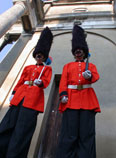 Best of British themed entertainment  - Royal  guard stilts