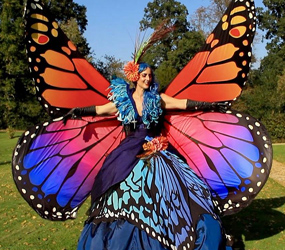 GARDEN THEMED ENTERTAINMENT - BUTTERFLY FLUTTERERS ACT - HOVERING BUTTERFLIES TO HIRE