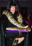 Harry Potter themed entertainment Slytherin Snake walkabout